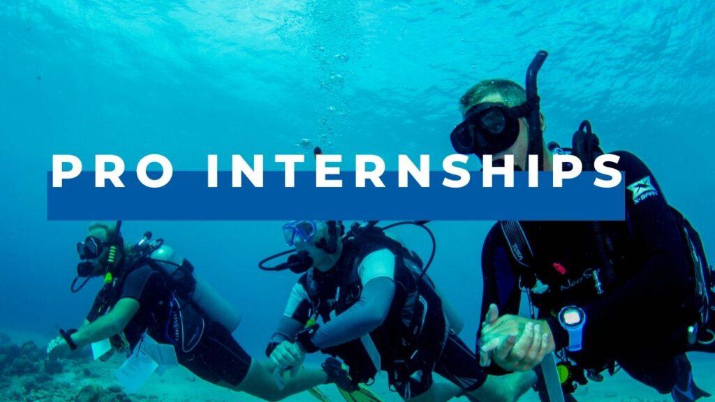 dive pro internships