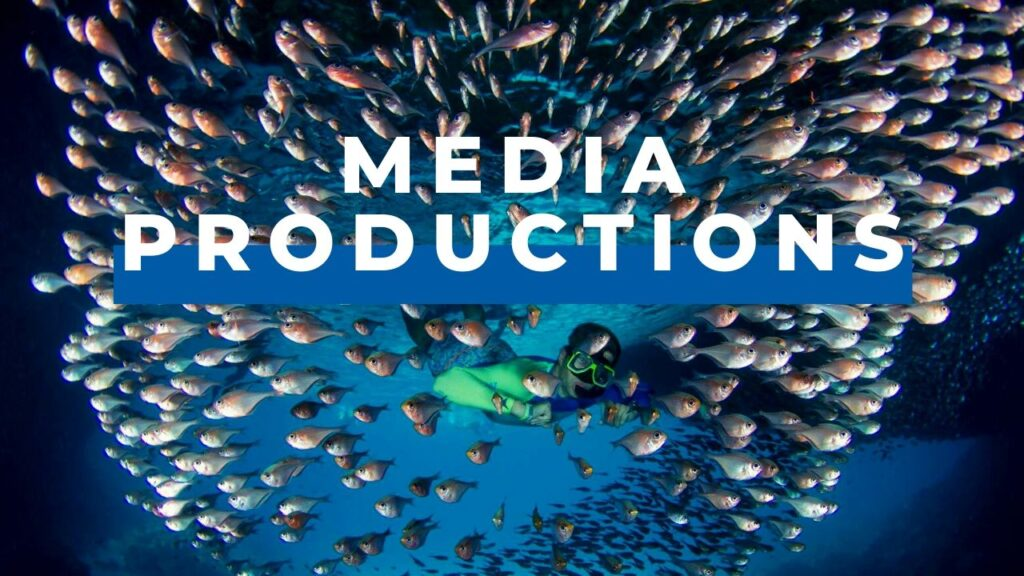 Dive Division Media