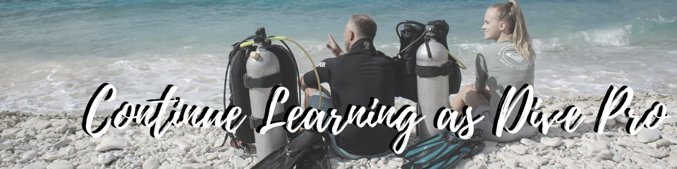 continue learning as Dive Pro