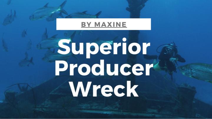 Superior Producer