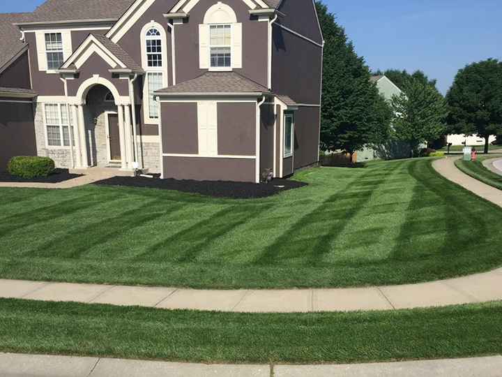 Mowing - 1