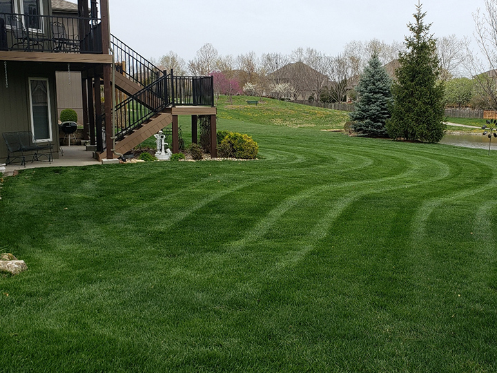 Mowing - 2