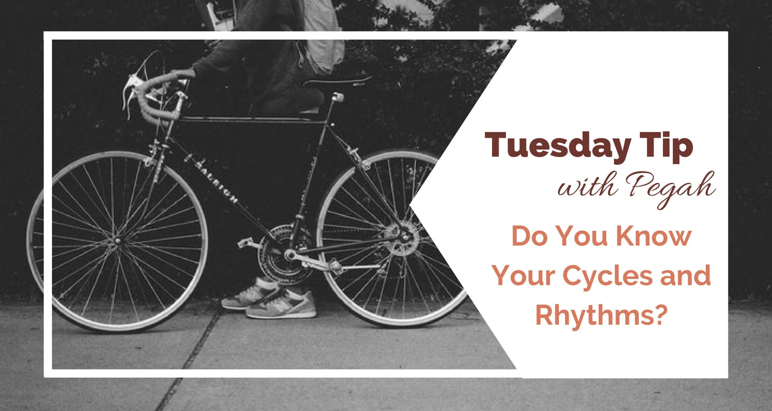 Do You Know Your Cycles and Rhythms?