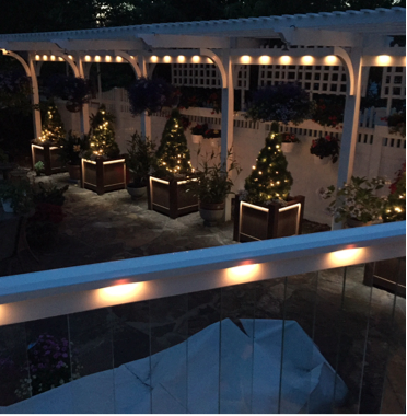 FocalZona_Planters_with_Lights