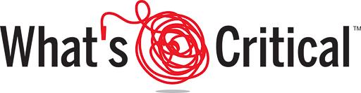 whats critical logo
