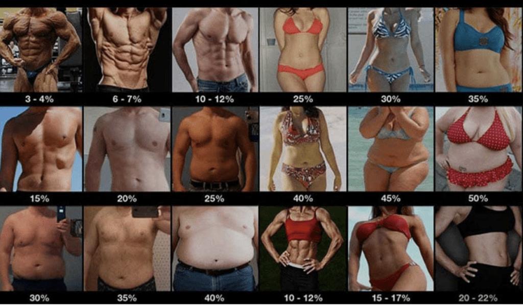 sarah bowmar body fat