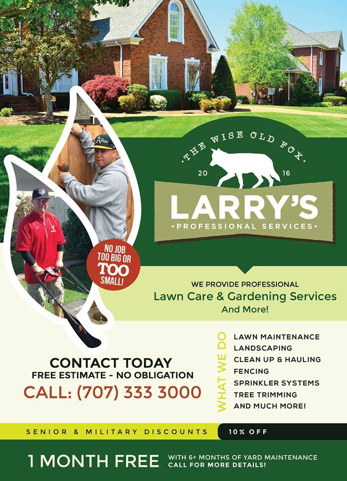 Larry's Pro Services