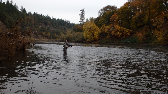 Casting my bamboo trout spey rod.