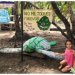 dont eat costa rica turtle eggs
