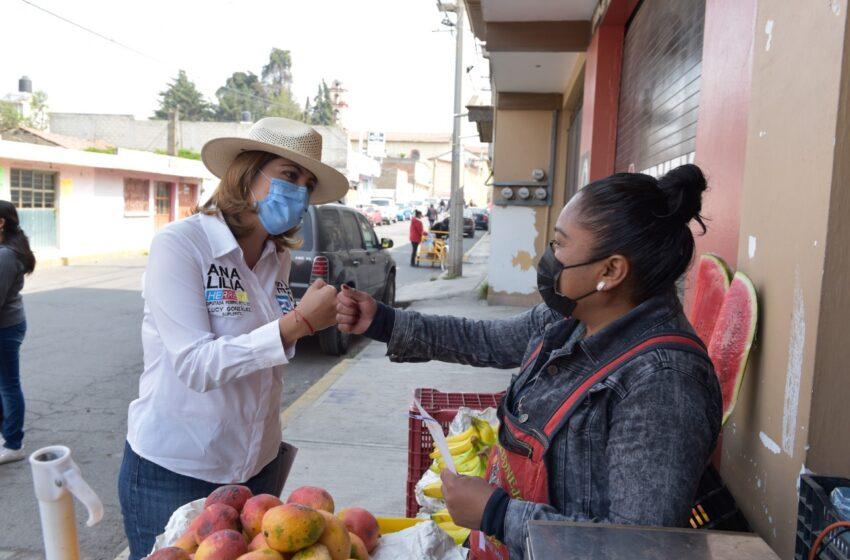 FAMILIAS MEXICANAS HAN SIDO DURAMENTE GOLPEADAS POR EL GOBIERNO FEDERAL: ANA LILIA HERRERA