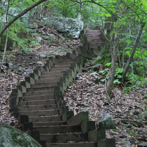 Wooden staircase in western North Carolina