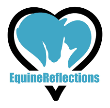 Equine Reflections
