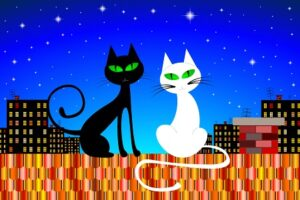cat superstitions worldwide