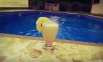 Costa Rica villa for rent pinacolada