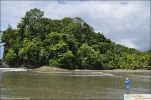 Playa Ventanas jungle costa rica