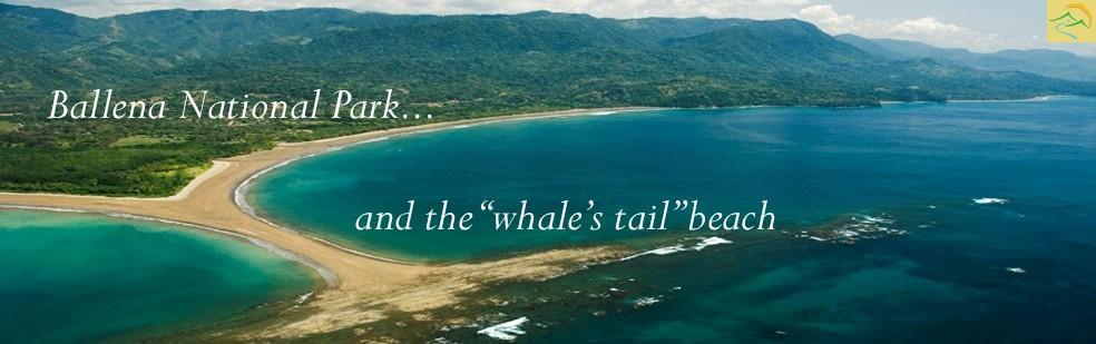 Ballena National Park uvita Whales Tail