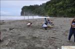 playa tortuga people ojochal