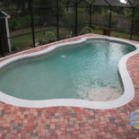 Nice Sized Pool Enclosed