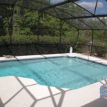 Irregular Shaped Pool with Dolphin Fountain
