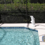 New Pool with Dolphin Fountain