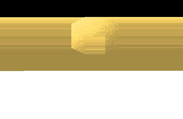 Maximus Enterprises