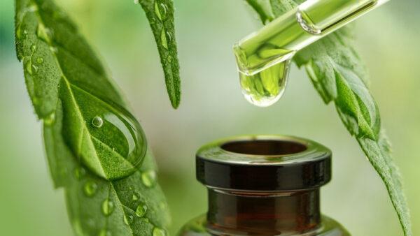 What is CBD Oil? What is Cannabidiol? (can·na·bi·di·ol)