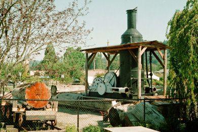 Steam Donkey Display