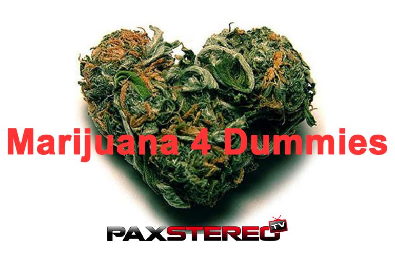 Marijuana 4 Dummies (Series)