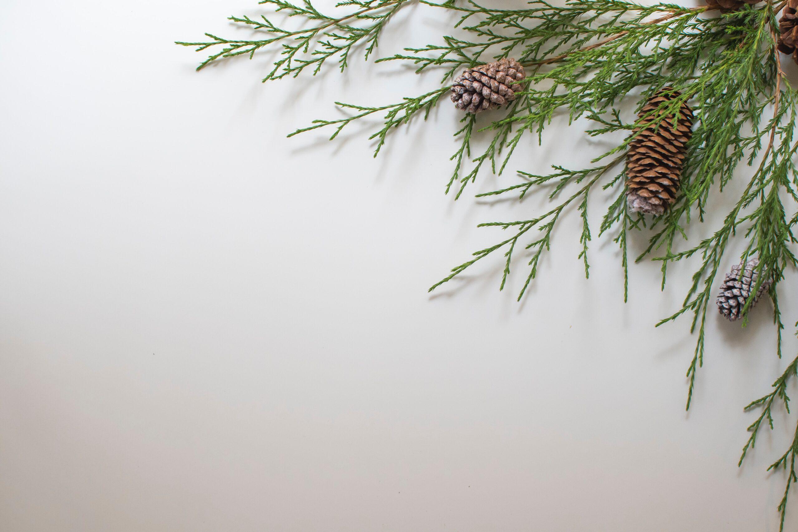 December Affirmations