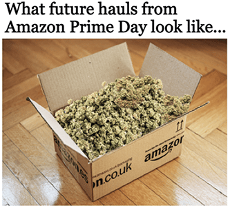 Future hauls from Prime Day cannabis meme