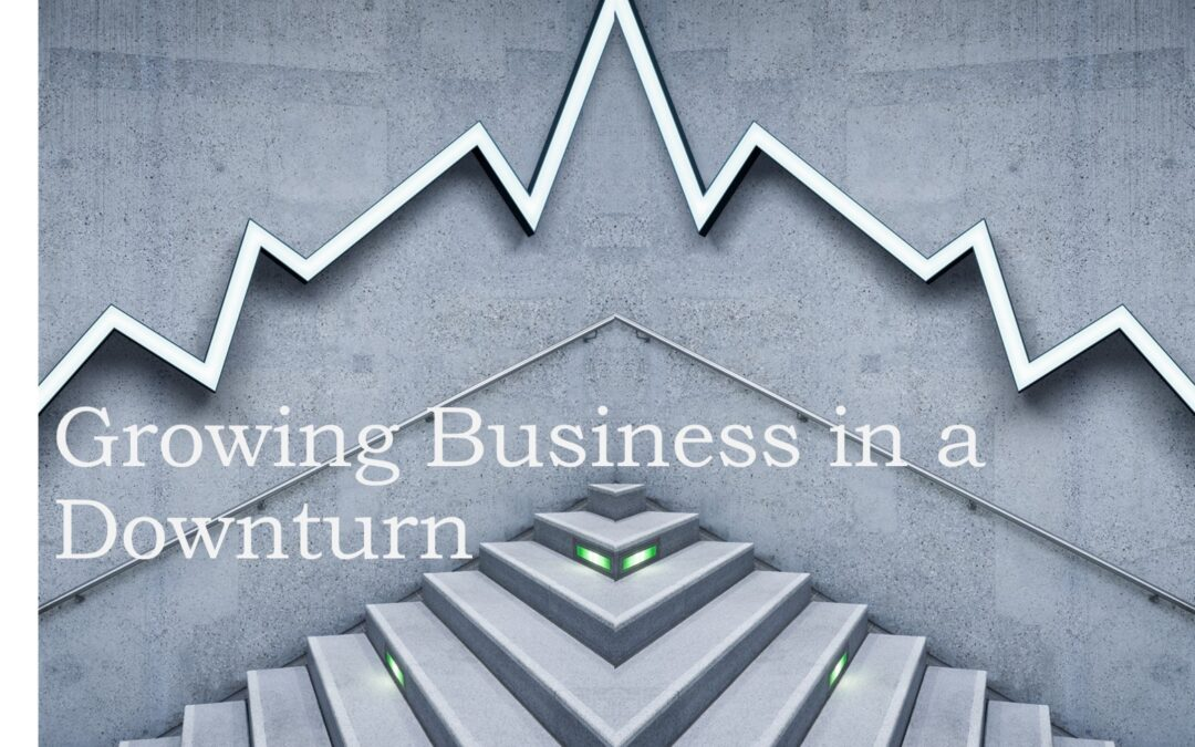 How to Grow Business in a Downturn