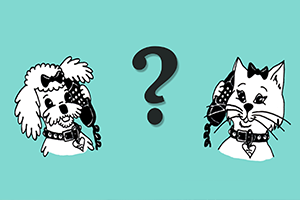A Question Everyone Should Ask Their Pet Sitter or Dog Walker