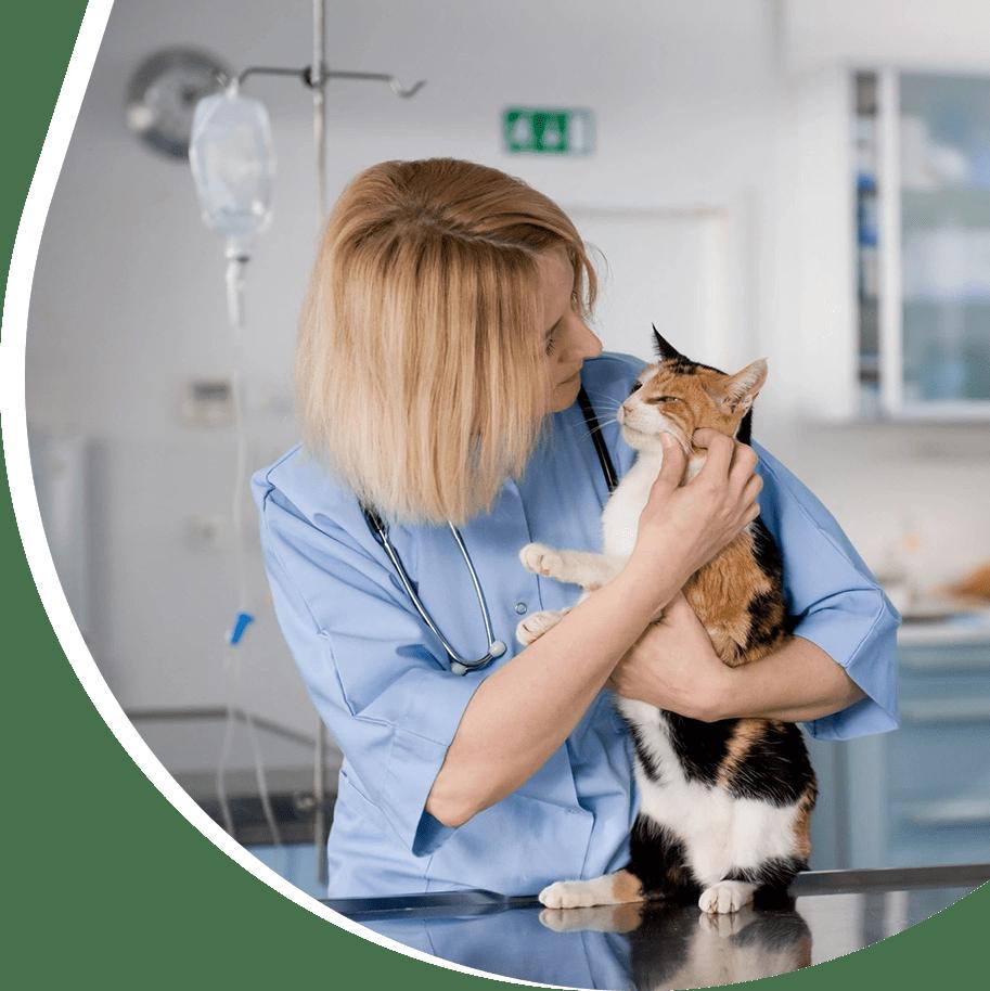Small Animal Care Center