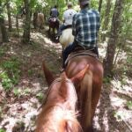 Horseback riding middle Tennessee