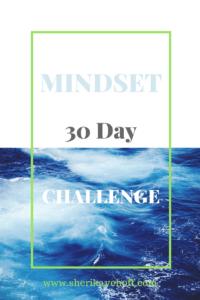 #leadership #mindset #businessgrowth https://sherikayehoff.com/blog
