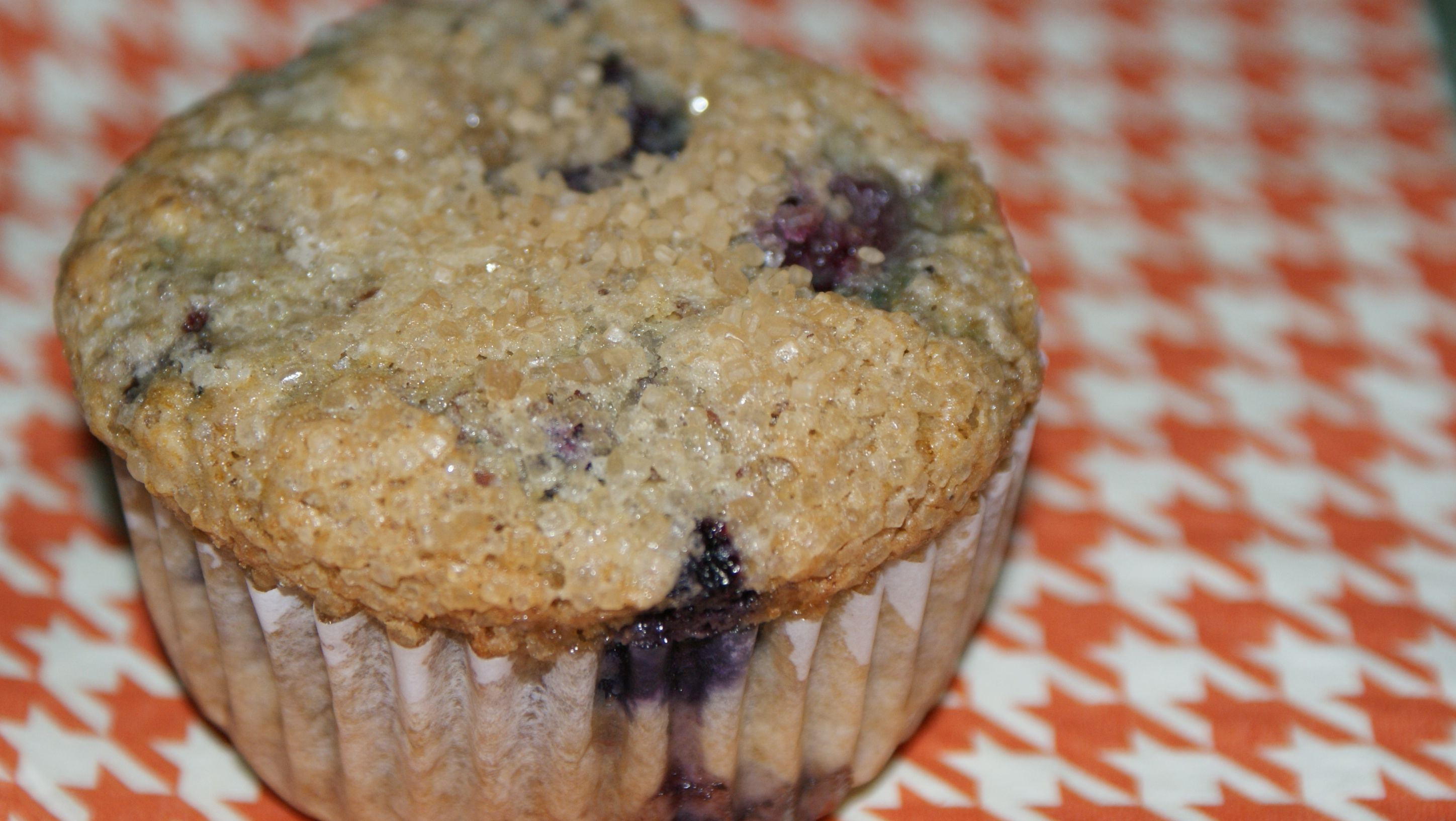 Low Fat Blueberry Muffins with Oats, Almonds and Flax