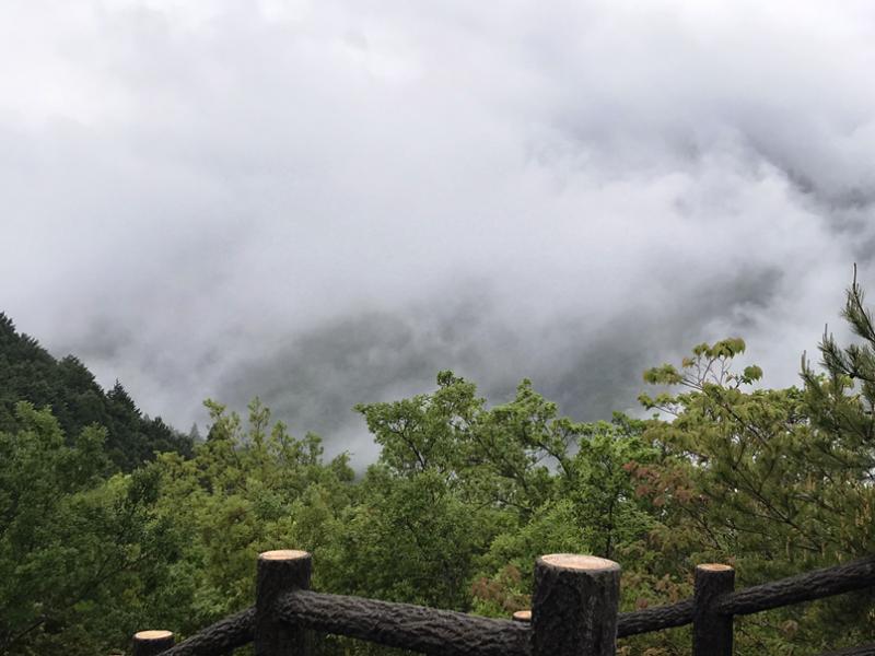 Туман в Кумано