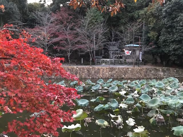 Миками Дзиндзя 御髪神社