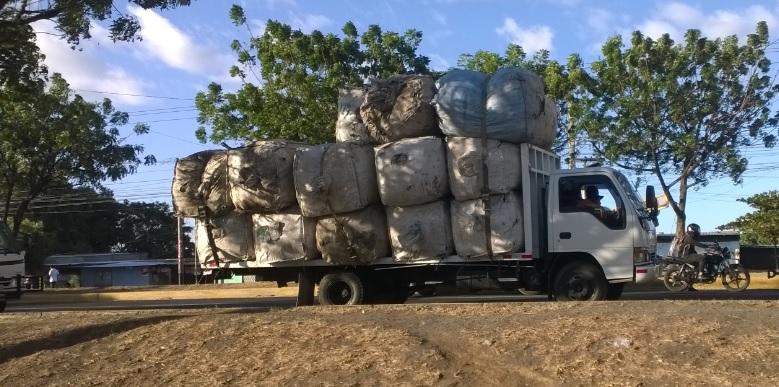 El negocio de recoger basura reciclable en Nicaragua