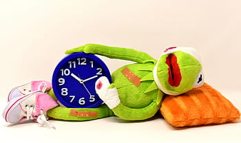 picture of hermit the frog laying on a pillow, with a broken arm and a clock between his legs.  It means, time heals all wounds.