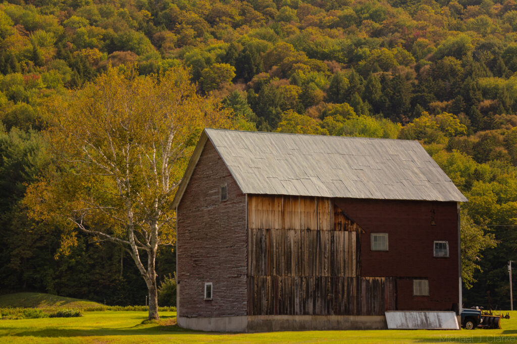 An old barn and birch tree seen amidst the early autumn landscape in Vermont.