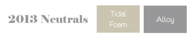 Pantone 2013 The New Neutrals ~ Tidal Foam & Alloy