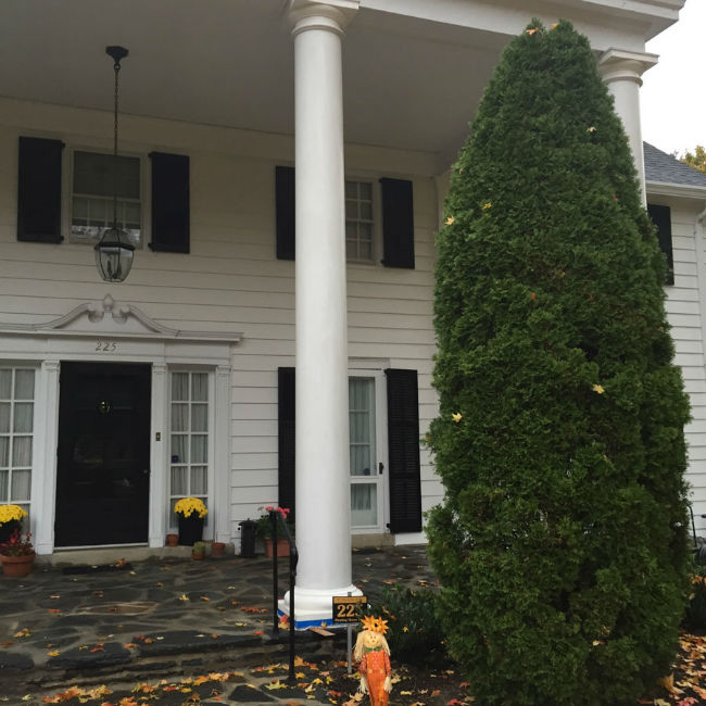 Pillars Replaced and Painted at Main Line Home