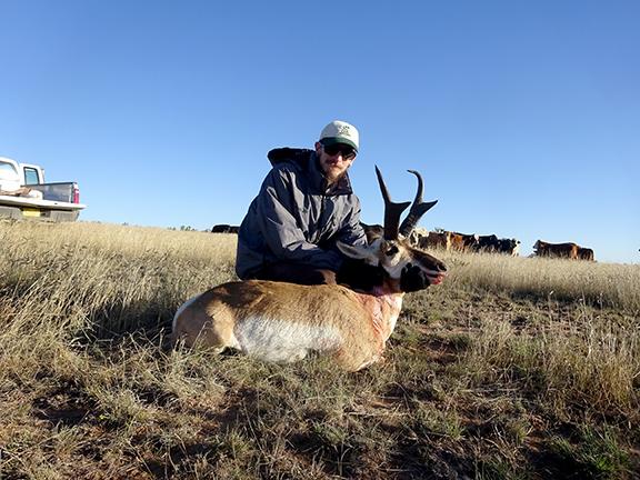 Antelope 011