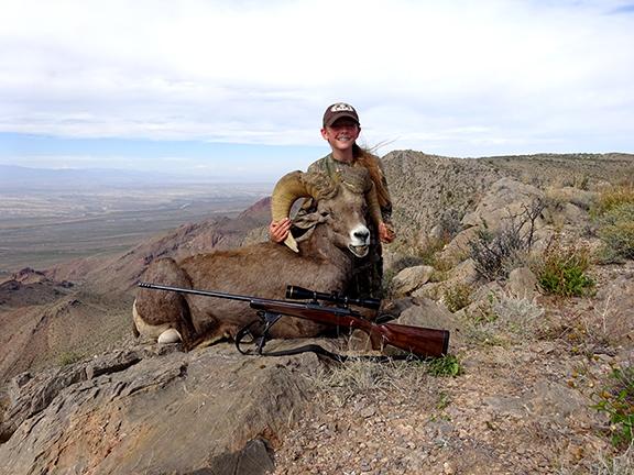 Ciaras Desert Bighorn 021