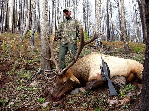Rifle Elk 039