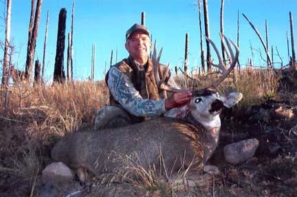 Tom-Akin 4x4 mule deer gila wild