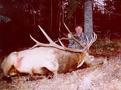 bruce mabrey OK 324 B&C AZ hunt