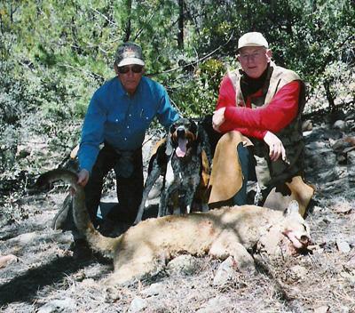 gary Chamberlain MI Gila Mountain lion