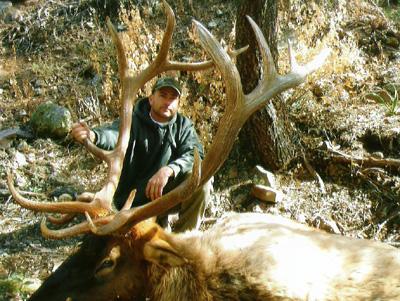 shannon Cabebe CA AZ 353 Blue